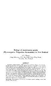 Biology of Ancistrocerus gazella (Hymenoptera: Vespoidea: Eumenidae) in New Zealand