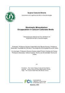 Biomimetic Mineralization: Encapsulation in Calcium Carbonate Shells