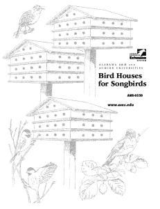 Bird Houses for Songbirds