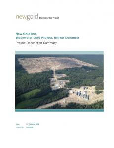 Blackwater Gold Project. New Gold Inc. Blackwater Gold Project, British Columbia Project Description Summary