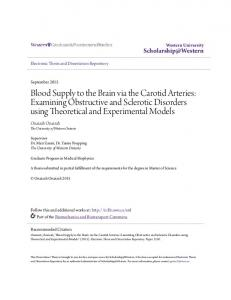 Blood Supply to the Brain via the Carotid Arteries: Examining Obstructive and Sclerotic Disorders using Theoretical and Experimental Models