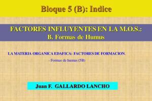 Bloque 5 (B): Indice