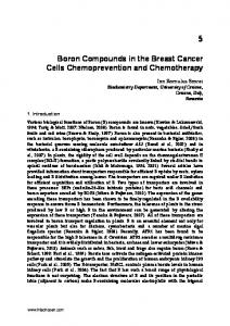 Boron Compounds in the Breast Cancer Cells Chemoprevention and Chemotherapy