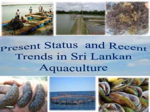 Brackish. Sri Lanka s coast line km