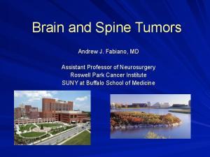 Brain and Spine Tumors
