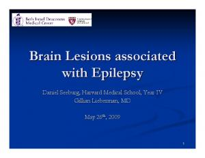 Brain Lesions associated with Epilepsy