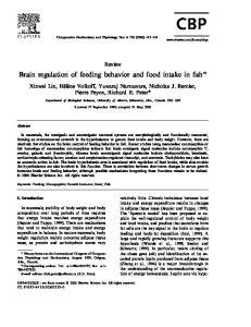 Brain regulation of feeding behavior and food intake in fish