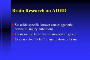 Brain Research on ADHD