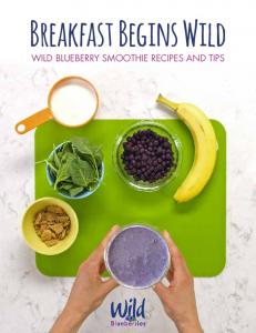 Breakfast Begins Wild WILD BLUEBERRY SMOOTHIE RECIPES AND TIPS