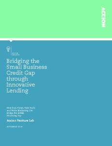 Bridging the Small Business Credit Gap through Innovative Lending