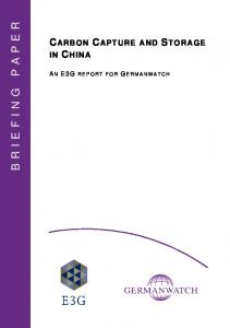 BRIEFING PAPER CARBON CAPTURE AND STORAGE IN CHINA A N E3G REPORT FOR G ERMANWATCH