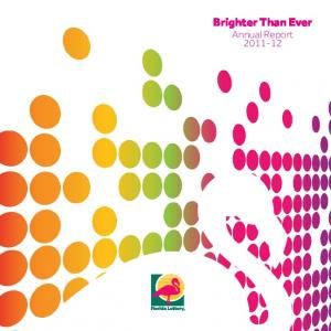 Brighter Than Ever Annual Report