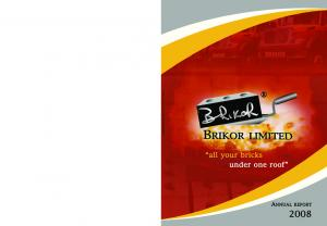 BRIKOR LIMITED annual report 2008