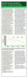 Broiler breeder Gumboro disease vaccination priming