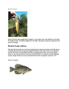 Brown Trout Advice: Brown Trout. Black Crappie