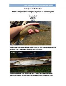 Brown Trout; and their Ecological Impacts as an Invasive Species
