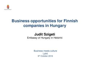 Business opportunities for Finnish companies in Hungary