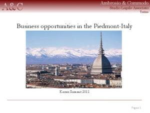 Business opportunities in the Piedmont-Italy