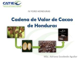 Cadena de Valor de Cacao de Honduras