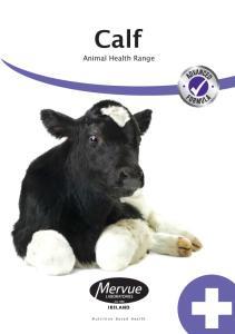 Calf. Animal Health Range. Nutrition Based Health