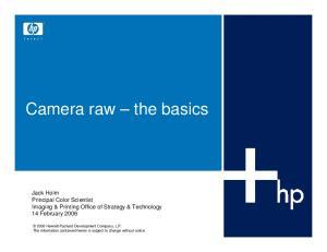 Camera raw the basics