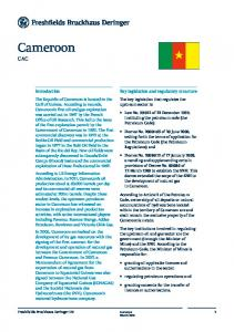 Cameroon CAC. Key legislation and regulatory structure. Introduction