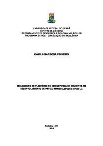 CAMILA BARBOSA PINHEIRO