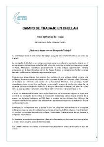 CAMPO DE TRABAJO EN CHELLAH