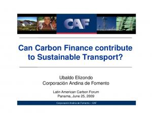 Can Carbon Finance contribute to Sustainable Transport?