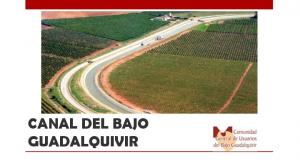 CANAL DEL BAJO GUADALQUIVIR