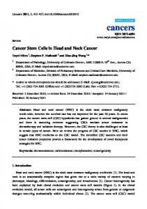 Cancer Stem Cells in Head and Neck Cancer