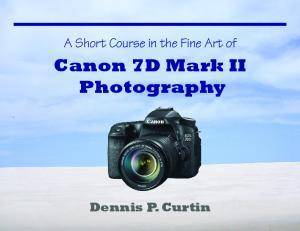 Canon 7D Mark II Photography