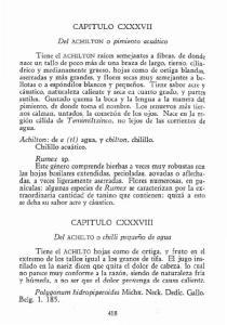 CAPITULO CXXXVII CAPITULO CXXXVIII