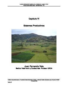 Capitulo VI. Sistemas Productivos
