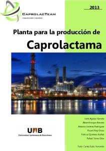 Caprolactama. Planta para la producción de 5. SEGURIDAD E HIGIENE