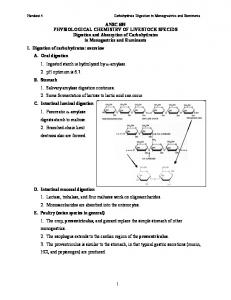 Carbohydrate Digestion in Monograstrics and Ruminants