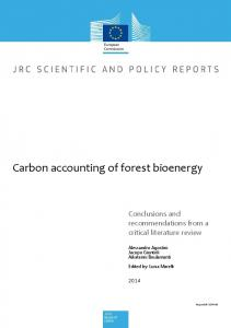 Carbon accounting of forest bioenergy