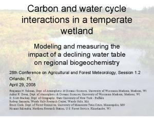 Carbon and water cycle interactions in a temperate wetland