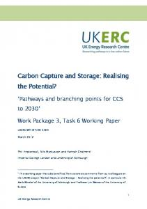 Carbon Capture and Storage: Realising the Potential?