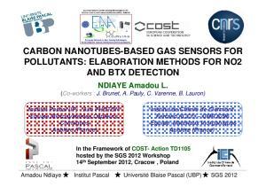 CARBON NANOTUBES-BASED GAS SENSORS FOR POLLUTANTS: ELABORATION METHODS FOR NO2 AND BTX DETECTION