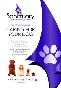 CARING FOR YOUR DOG.  FREE E-BOOK DOWNLOAD