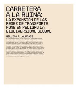 CARRETERA A LA RUINA: