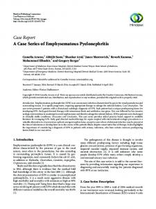 Case Report A Case Series of Emphysematous Pyelonephritis