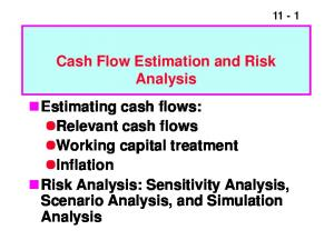 Cash Flow Estimation and Risk. Analysis