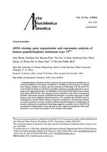 cdna cloning, gene organization and expression analysis of human peptidylarginine deiminase type VI
