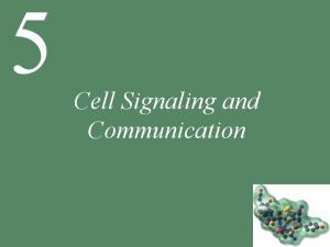Cell Signaling and Communication
