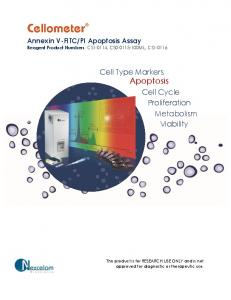 Cell Type Markers Apoptosis