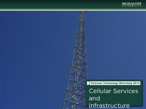 Cellular Services and Infrastructure