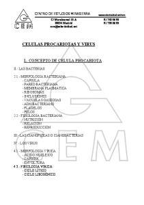 CELULAS PROCARIOTAS Y VIRUS