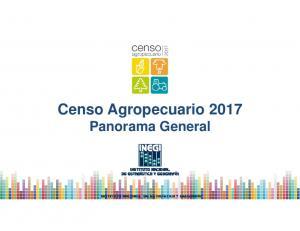 Censo Agropecuario 2017 Panorama General
